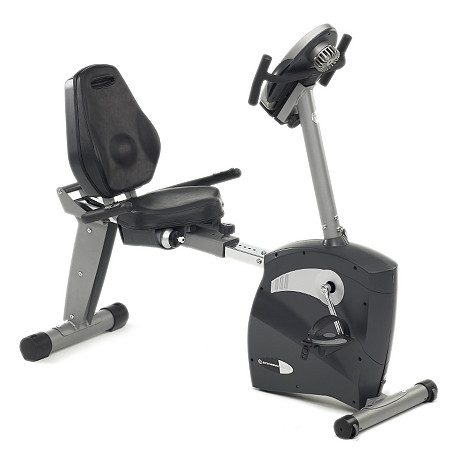 Schwinn® 213 Recumbent Exercise Bike